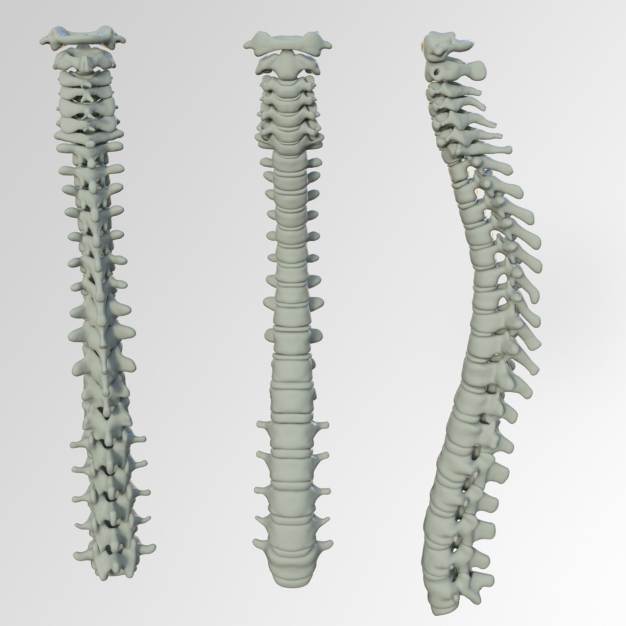 Spinal Screenings  Tecumseh, MI